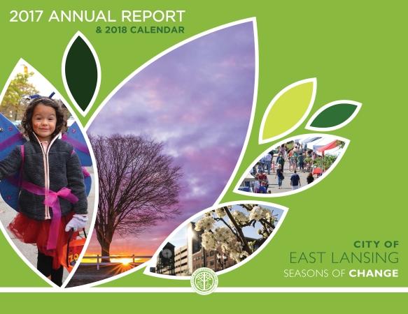 annual report 2017-1